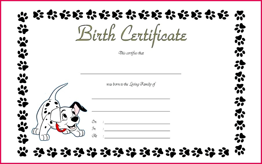 4 Blank Build A Bear Birth Certificate Template 95672 Within Build A Bear Birth Certificate Template